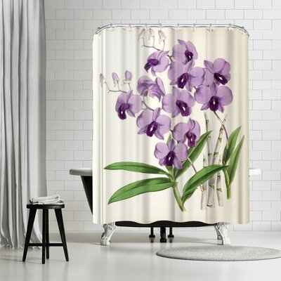 New York Botanical Garden Fitch Orchid Dendrobium Bigibbum Shower Curtain