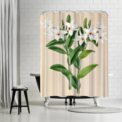 New York Botanical Garden Fitch Orchid Dendrobium Draconis Shower Curtain
