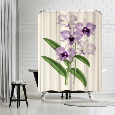 New York Botanical Garden Fitch Orchid Dendrobium Phlaenopsis Shower Curtain
