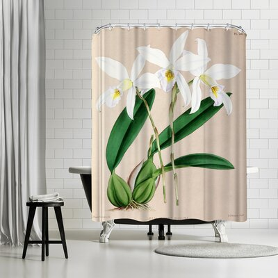 New York Botanical Garden Fitch Orchid Laelia Anceps Hilliana Shower Curtain