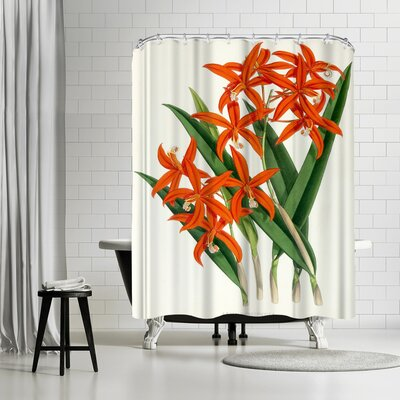 New York Botanical Garden Fitch Orchid Laelia Harpophylla Shower Curtain