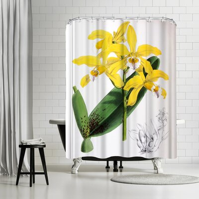 New York Botanical Garden Fitch Orchid Laelia Xanthina Shower Curtain