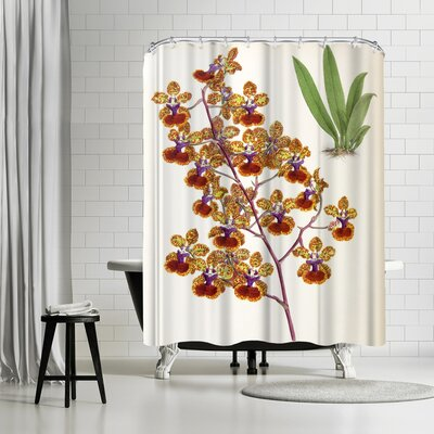 New York Botanical Garden Fitch Orchid Oncidium Haematochilum Shower Curtain