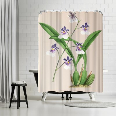 New York Botanical Garden Fitch Orchid Oncidium Phalaenopsis Shower Curtain