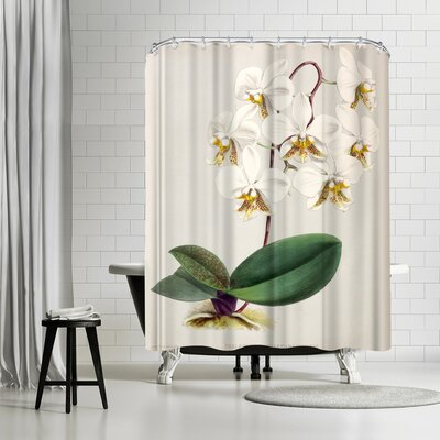New York Botanical Garden Fitch Orchid Phalaenopsis Stuartiana Nobilis Shower Curtain