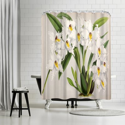 New York Botanical Garden Fitch Orchid Plate Shower Curtain