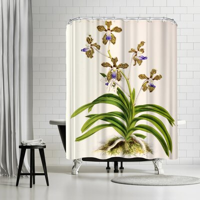 New York Botanical Garden Fitch Orchid Vanda Roxburghii Shower Curtain