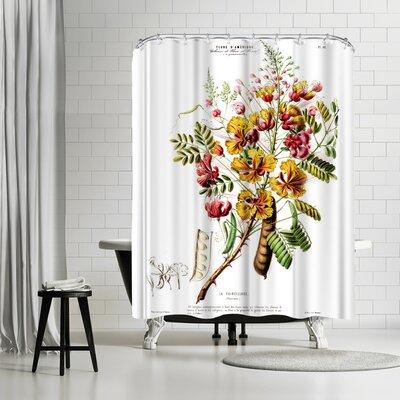 New York Botanical Garden Flored Amerique Lapoincillade Shower Curtain