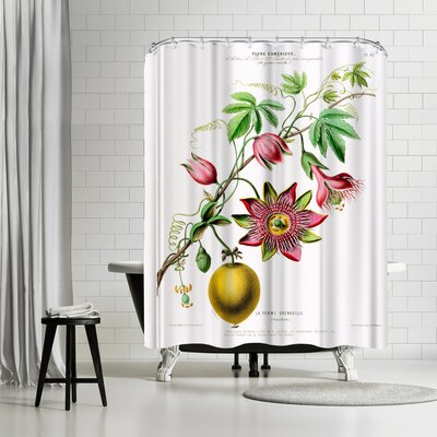 New York Botanical Garden Flored Amerique Lapomme Grenadille Shower Curtain