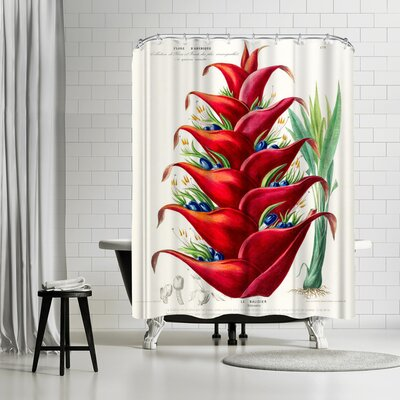 New York Botanical Garden Flored Amerique Lebalisier Shower Curtain