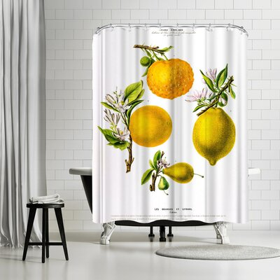 New York Botanical Garden Flored Amerique Lesoranges Etcitrons Shower Curtain