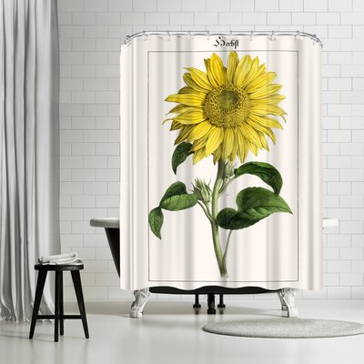 New York Botanical Garden Sonnenblume Shower Curtain