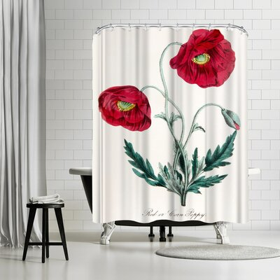 New York Botanical Garden American Flora Poppy Shower Curtain