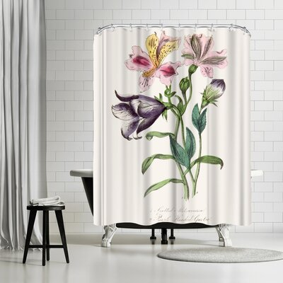 New York Botanical Garden American Flora Purple Headed Garlic Shower Curtain