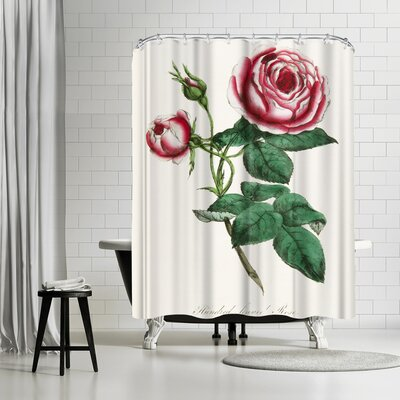 New York Botanical Garden American Flora Rose Shower Curtain