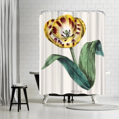 New York Botanical Garden American Flora Wildtulip Shower Curtain