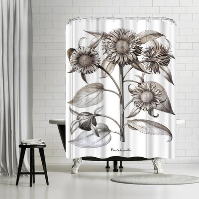New York Botanical Garden Besler Shower Curtain Color: White/Silver/Gray