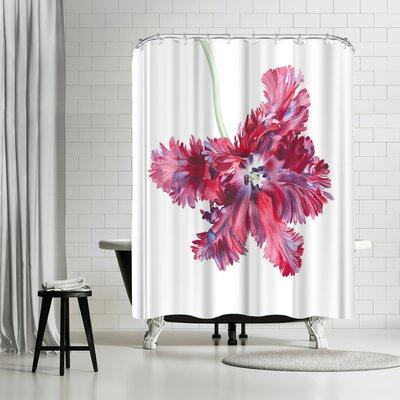 Solveig Studio Black Parrot Tulip Shower Curtain