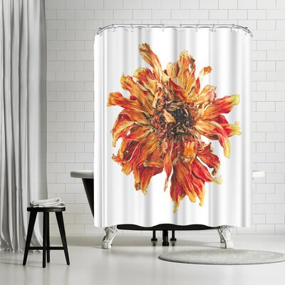 Solveig Studio Lion Flower Shower Curtain