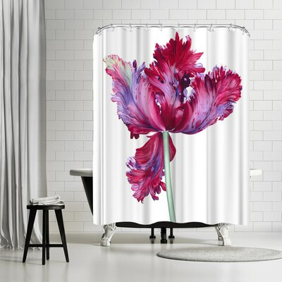 Elizabeth Hellman Parrot Tulip Shower Curtain