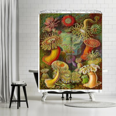 Adams Ale Haekcel Plate Shower Curtain