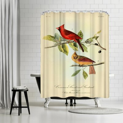 Adams Ale Red Cardinal Shower Curtain