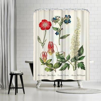 Adams Ale Rose Campion Shower Curtain
