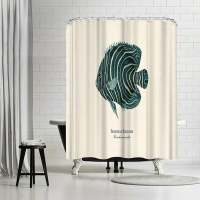 Adams Ale Semi Circle Ange Fish Shower Curtain