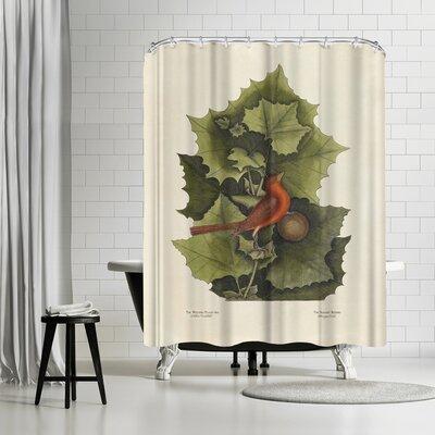 Adams Ale The Redbird Shower Curtain