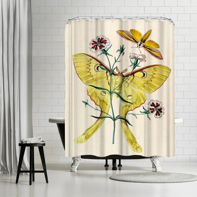 Adams Ale Yellow Moth Shower Curtain