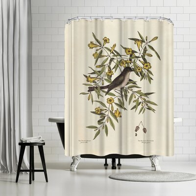 Adams Ale Yellow Jeffamy Shower Curtain