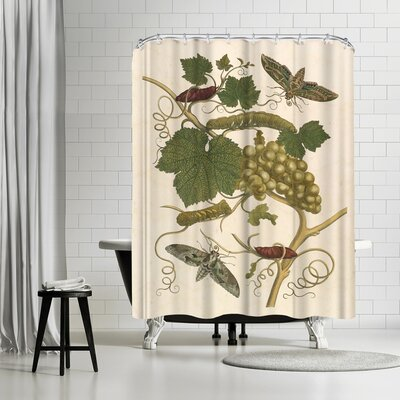Adams Ale Grapes Shower Curtain
