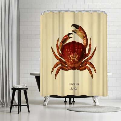 Adams Ale Mud Crab Shower Curtain