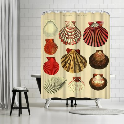 Adams Ale Oysters Shower Curtain