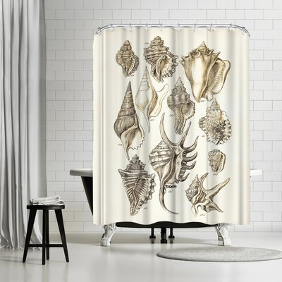 Adams Ale Shells Shower Curtain