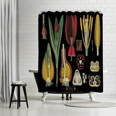 Adams Ale Tulips Shower Curtain