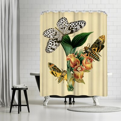 Adams Ale Dhm Shower Curtain Color: Beige/Banana Mania/Charcoal-Gray