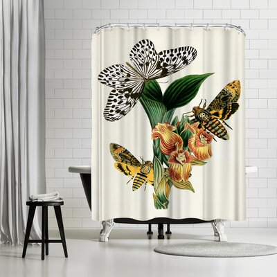 Adams Ale Dhm Shower Curtain Color: White/Banana Mania/Charcoal-Gray