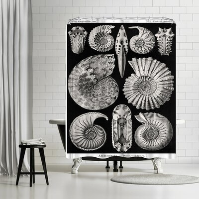 Adams Ale Haeckel Plate Shower Curtain
