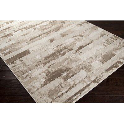 Chamlee White/Cream Area Rug Rug Size: Runner 27 x 71