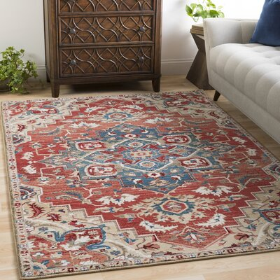 Lamphere Traditional Burnt Orange/Dark Red Area Rug