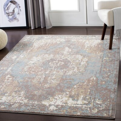 Almendarez Distressed Taupe/Pale Blue Area Rug Rug Size: Rectangle 2 x 3