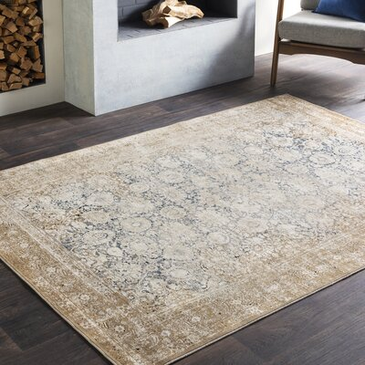 Pickney Distressed Beige/Khaki Area Rug