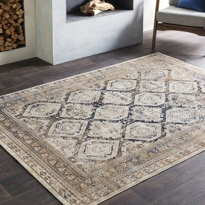 Pickney Distressed Beige/Taupe Area Rug