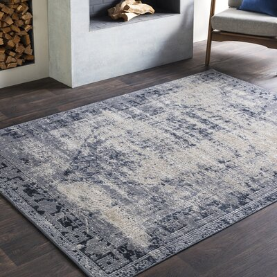Pickney Gray/Charcoal Area Rug