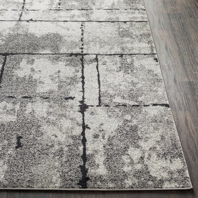 Cateline Distressed Taupe/Charcoal Area Rug Rug Size: Runner 27 x 76