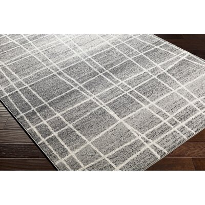 Cateline Distressed Charcoal/Gray Area Rug Rug Size: Runner 27 x 76