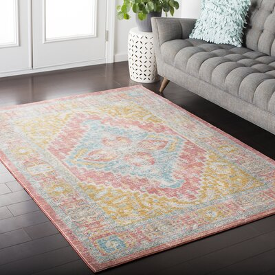 Almaraz Distressed Coral/Mint Area Rug