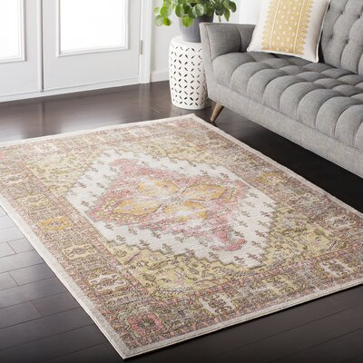 Almaraz Distressed Coral/Beige Area Rug