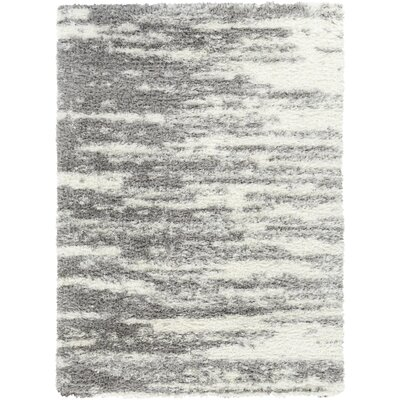 Carolus Shag White/Medium Gray Area Rug